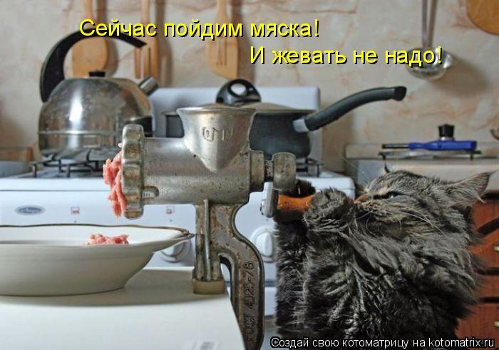 Котоматрица: Сейчас пойдим мяска! Сейчас пойдим мяска! И жевать не надо!