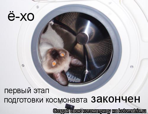 Котоматрица: ё-хо первый этап  подготовки космонавта закончен