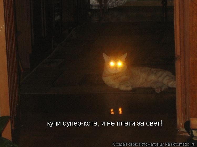 Котоматрица: купи супер-кота, и не плати за свет!