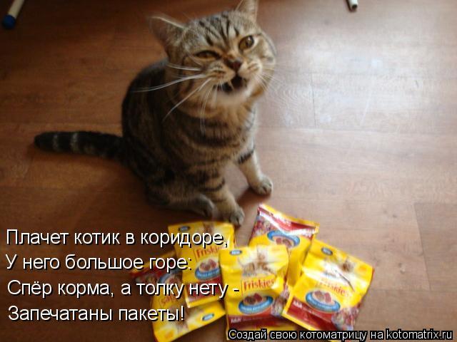 Котоматрица: Запечатаны пакеты! Спёр корма, а толку нету -  У него большое горе: Плачет котик в коридоре,