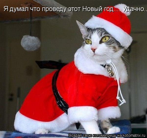 Котоматрица: Я думал что проведу этот Новый год.... Удачно.... а получилось