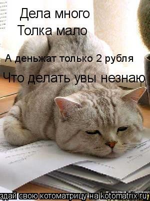 Котоматрица: Дела много Толка мало А деньжат только 2 рубля Что делать увы незнаю