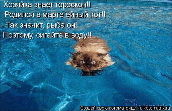 Котоматрица: Хозяйка знает гороскоп!!  Родился в марте ейный кот!!  Так значит, рыба он! Поэтому, сигайте в воду!!