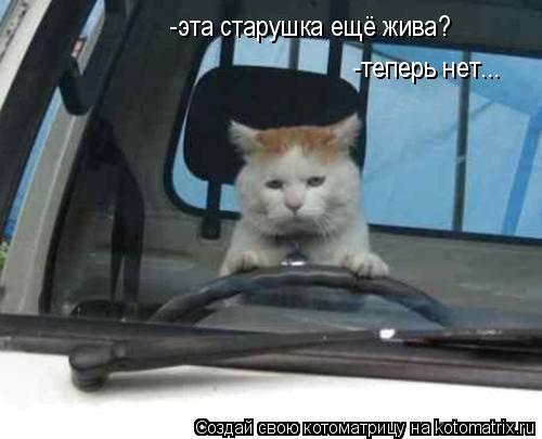 Котоматрица: -эта старушка ещё жива? -теперь нет...