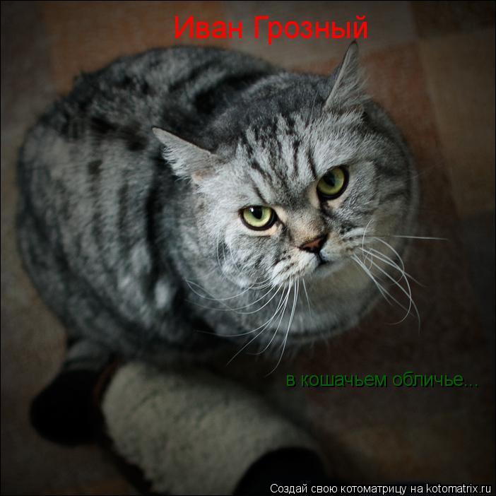 Котоматрица: Иван Грозный в кошачьем обличье...