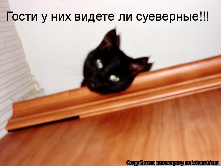 Котоматрица: Гости у них видете ли суеверные!!!