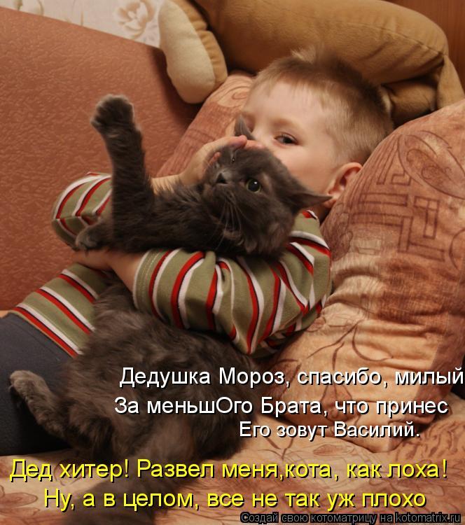Котоматрица: Дедушка Мороз, спасибо, милый. Его зовут Василий. Дед хитер! Развел меня,кота, как лоха!  Ну, а в целом, все не так уж плохо За меньшОго Брата, чт