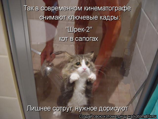"""Котоматрица: Так в современном кинематографе снимают ключевые кадры: """"Шрек-2"""" кот в сапогах Лишнее сотрут, нужное дорисуют"""