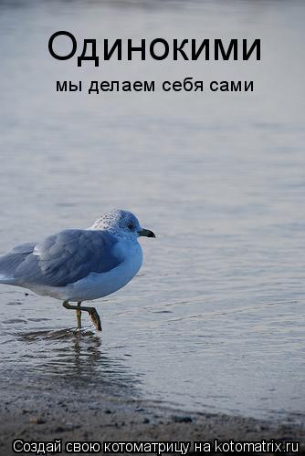 Котоматрица: Одинокими мы делаем себя сами