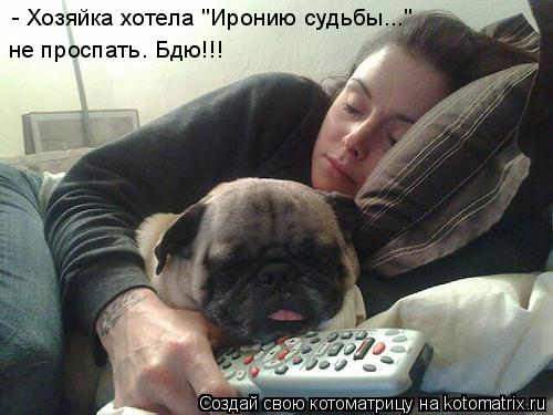 """Котоматрица: - { - Хозяйка хотела """"Иронию судьбы...""""  не проспать. Бдю!!!"""