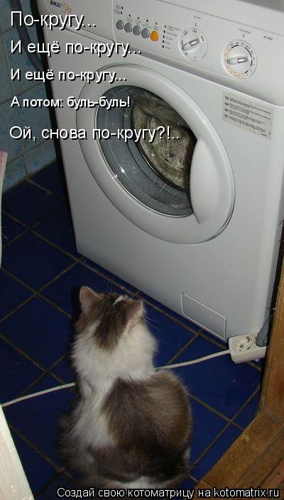 Котоматрица: По-кругу... И ещё по-кругу... И ещё по-кругу... А потом: буль-буль! Ой, снова по-кругу?!..