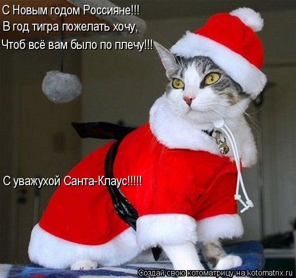 Котоматрица: С Новым годом Россияне!!! В год тигра пожелать хочу, Чтоб всё вам было по плечу!!! С уважухой Санта-Клаус!!!!!