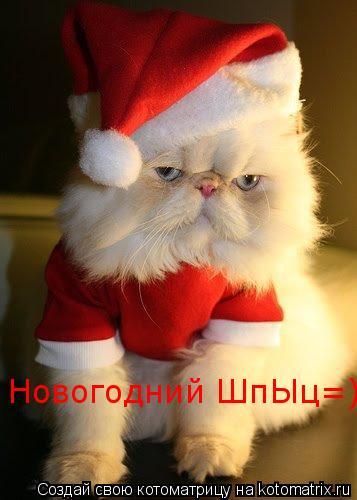 Котоматрица: Новогодний ШпЫц=)