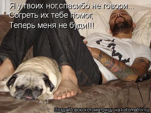 Котоматрица: Я у твоих ног,спасибо не говори... Согреть их тебе помог, Теперь меня не буди!!!