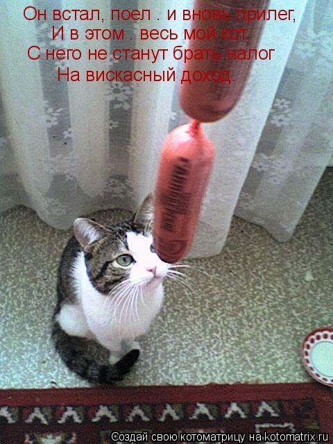 Котоматрица: Он встал, поел – и вновь прилег, И в этом – весь мой кот. С него не станут брать налог На вискасный доход.