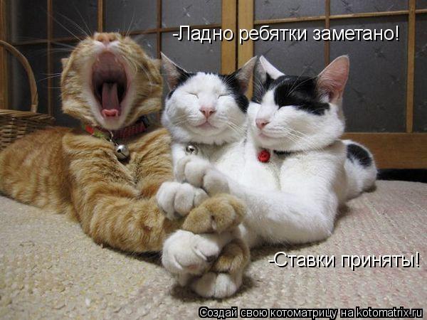 http://kotomatrix.ru/images/lolz/2010/01/03/449579.jpg