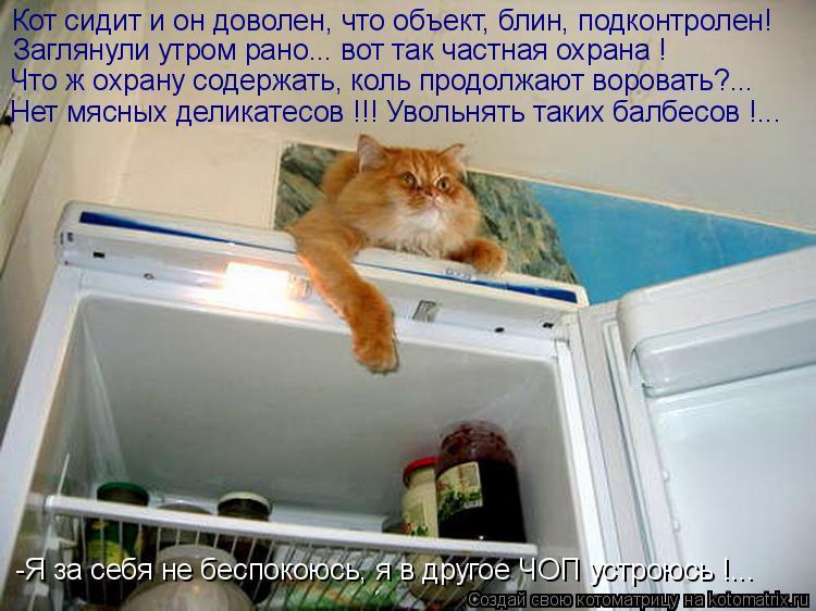 Котоматрица: Кот сидит и он доволен, что объект, блин, подконтролен! Заглянули утром рано... вот так частная охрана ! Что ж охрану содержать, коль продолжаю