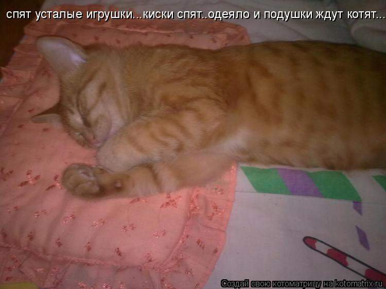 Котоматрица: спят усталые игрушки...киски спят..одеяло и подушки ждут котят...