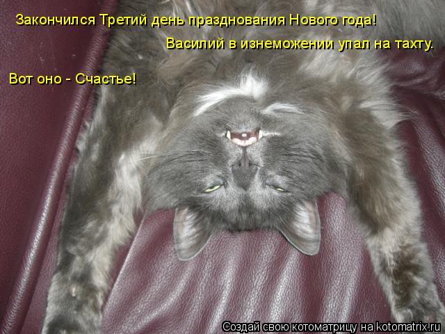 Котоматрица: Закончился Третий день празднования Нового года! Василий в изнеможении упал на тахту. Вот оно - Счастье!