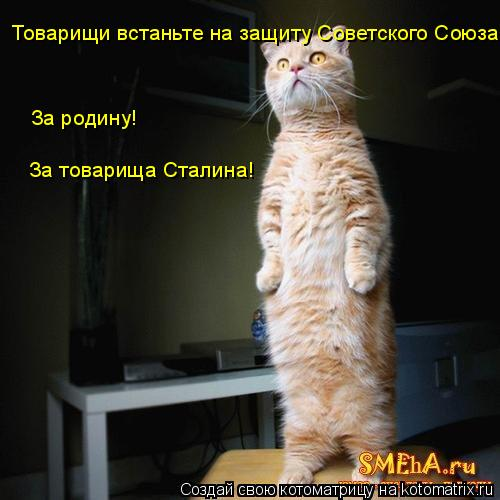Котоматрица: Товарищи встаньте на защиту Советского Союза! За родину! За товарища Сталина!