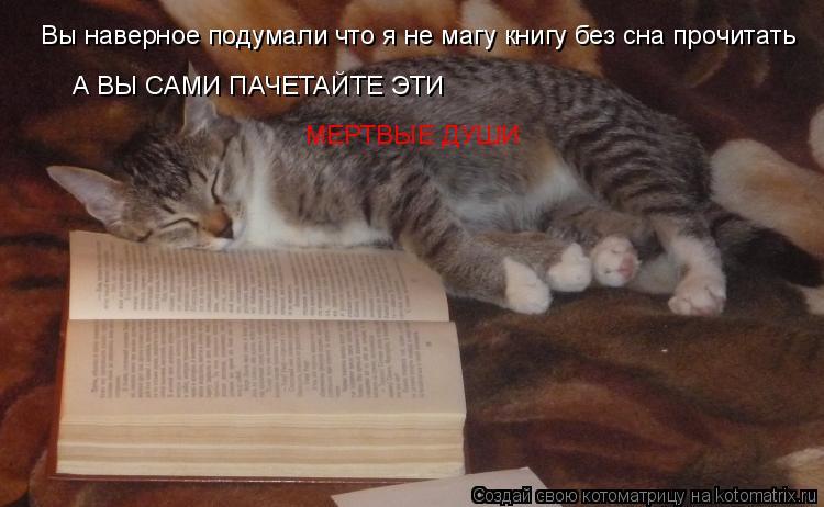 Котоматрица: Вы наверное подумали что я не магу книгу без сна прочитать А ВЫ САМИ ПАЧЕТАЙТЕ ЭТИ  МЕРТВЫЕ ДУШИ