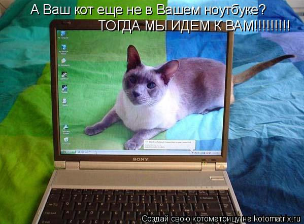 Котоматрица: А Ваш кот еще не в Вашем ноутбуке? ТОГДА МЫ ИДЕМ К ВАМ!!!!!!!!!