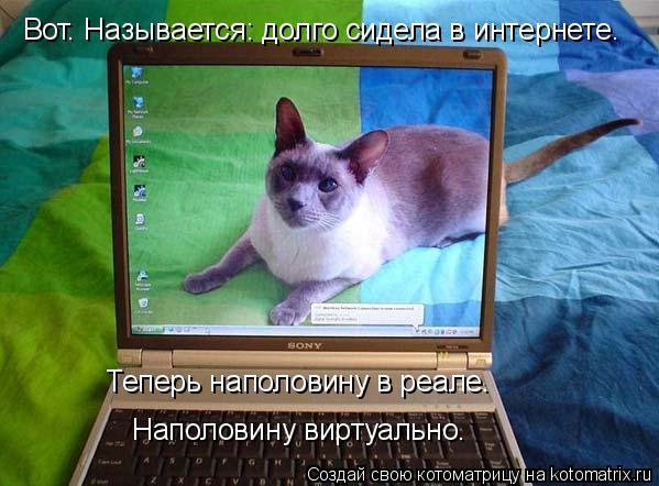 Котоматрица: Вот. Называется: долго сидела в интернете. Теперь наполовину в реале. Наполовину виртуально.