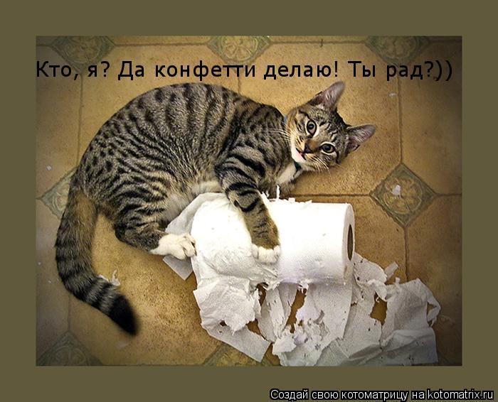 Котоматрица: Кто, я? Да конфетти делаю! Ты рад?))