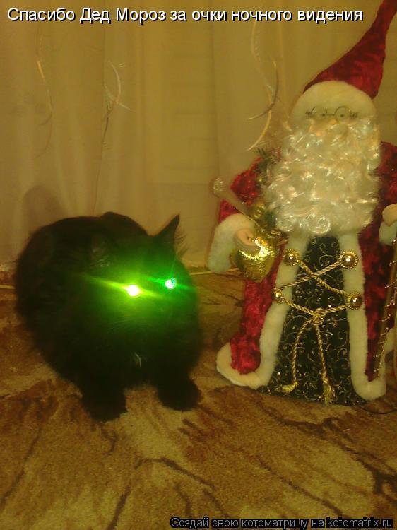 Котоматрица: Спасибо Дед Мороз за очки ночного видения
