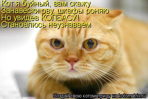 Котоматрица: Кот я буйный, вам скажу Занавески рву, шкафы роняю Но увидев КОЛБАСУ! Становлюсь неузнаваем