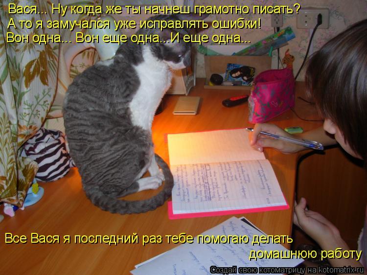 Котоматрица: Вася... Ну когда же ты начнеш грамотно писать? А то я замучался уже исправлять ошибки! Вон одна... Вон еще одна...И еще одна... Все Вася я последни