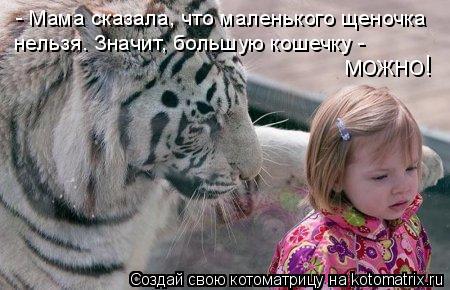 Котоматрица: - Мама сказала, что маленького щеночка нельзя. Значит, большую кошечку -  можно!