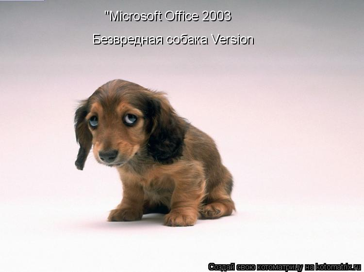 "Котоматрица: ""Microsoft Office 2003 Безвредная собака Version"