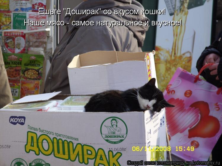 """Котоматрица: Ешьте """"Доширак"""" со вкусом кошки! Наше мясо - самое натуральное и вкусное!"""