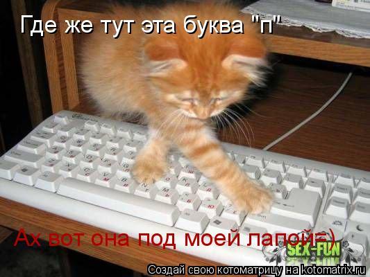 """Котоматрица: Где же тут эта буква """"п"""" Ах вот она под моей лапой=)"""