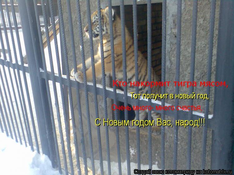 Котоматрица: Кто накормит тигра мясом, Тот получит в новый год, Очень много- много счастья, С Новым годом Вас, народ!!!