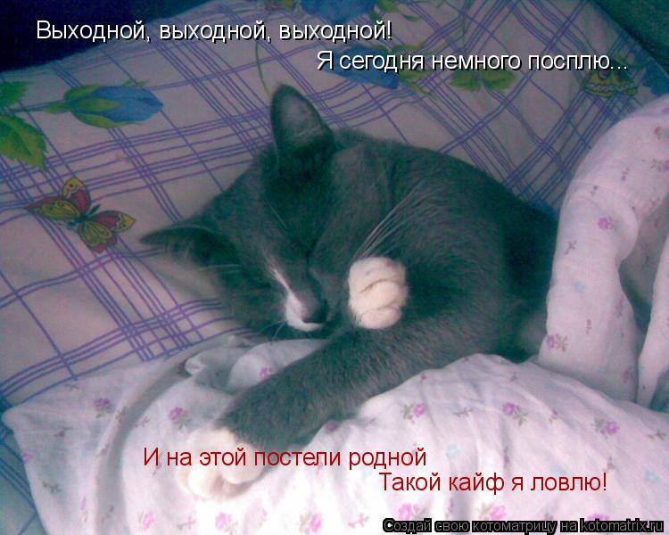 Котоматрица: Выходной, выходной, выходной!  Я сегодня немного посплю... И на этой постели родной Такой кайф я ловлю!