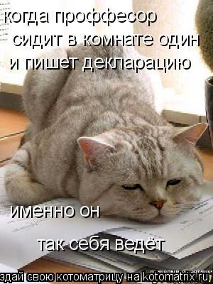 Котоматрица: когда проффесор сидит в комнате один и пишет декларацию именно он так себя ведёт