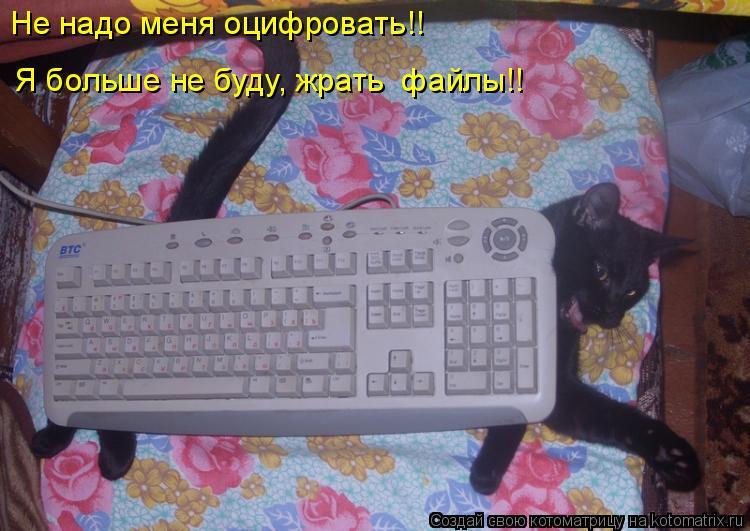 Котоматрица: Не надо меня оцифровать!!   Я больше не буду, жрать  файлы!!