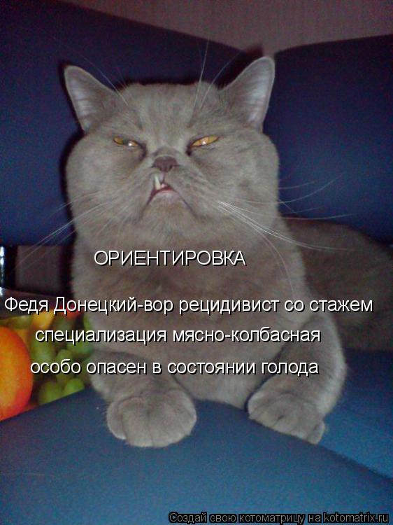 Котоматрица: ОРИЕНТИРОВКА Федя Донецкий-вор рецидивист со стажем специализация мясно-колбасная особо опасен в состоянии голода