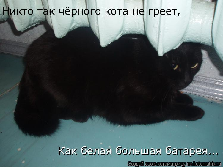 Котоматрица: Никто так чёрного кота не греет, Как белая большая батарея...