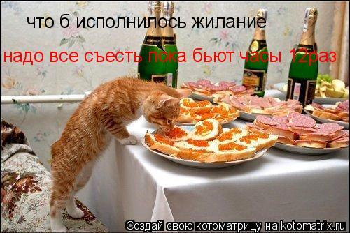 Котоматрица: что б исполнилось жилание  надо все съесть пока бьют часы 12раз