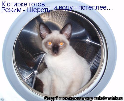 Котоматрица: К стирке готов... Режим - Шерсть и воду - потеплее....