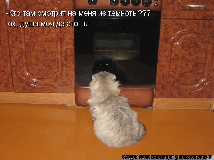 Котоматрица: -Кто там смотрит на меня из темноты???  ох, душа моя,да это ты...