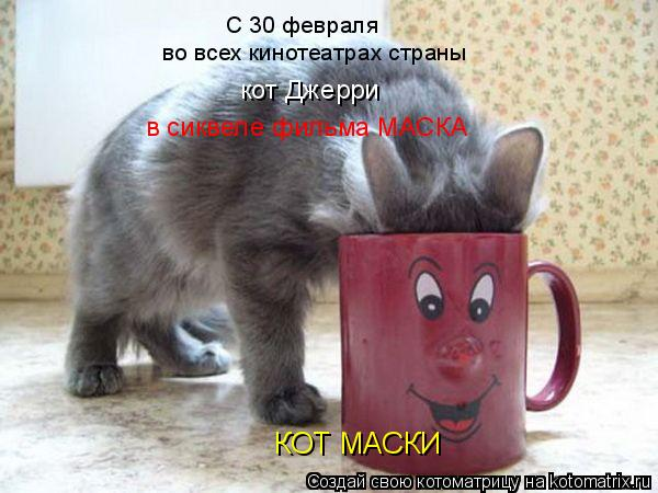 Котоматрица: КОТ МАСКИ С 30 февраля во всех кинотеатрах страны кот Джерри  в сиквеле фильма МАСКА
