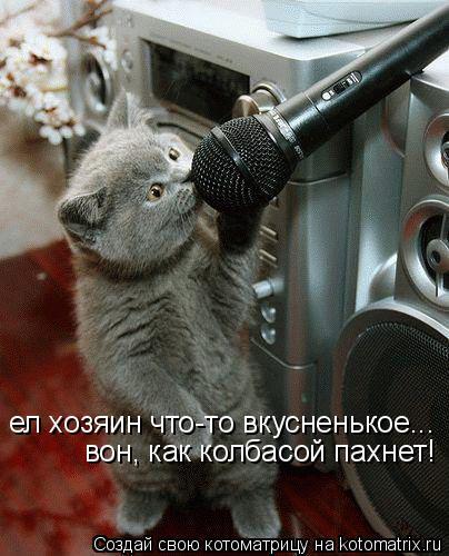 Котоматрица: ел хозяин что-то вкусненькое... вон, как колбасой пахнет!