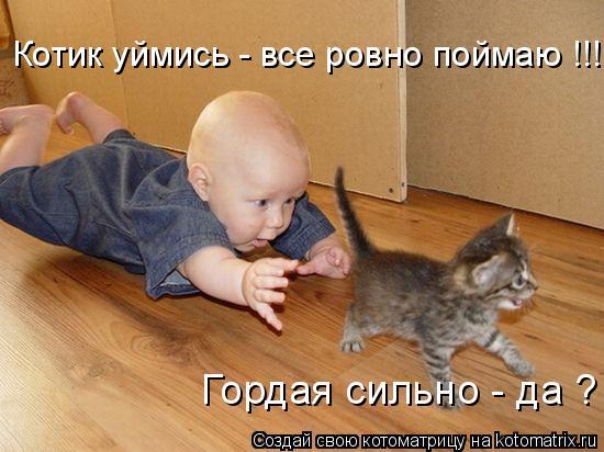 Котоматрица: Котик уймись - все ровно поймаю !!! Гордая сильно - да ?