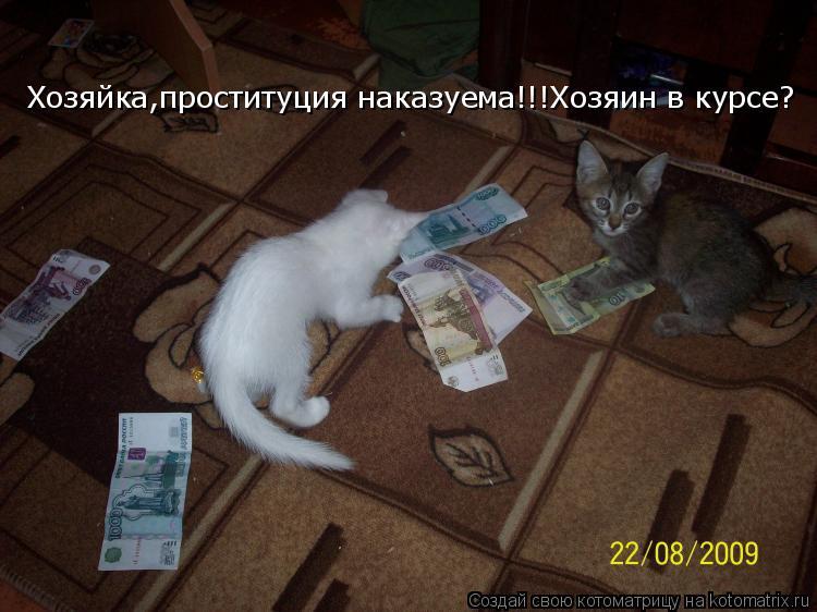 Котоматрица: Хозяйка,проституция наказуема!!!Хозяин в курсе?