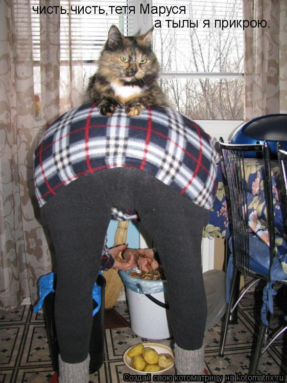 Котоматрица: чисть,чисть,тетя Маруся а тылы я прикрою.