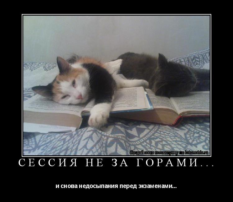 Котоматрица: Сессия не за горами... и снова недосыпания перед экзаменами...
